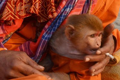Makar Sankranti Hindu Allahabad Magh mela