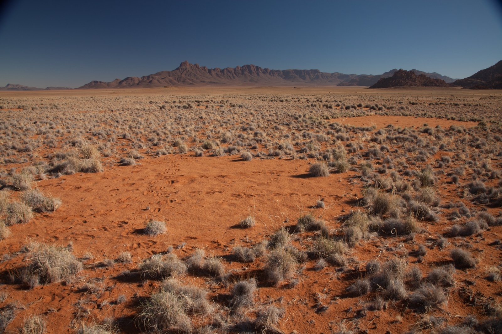 Namibia fairy circle