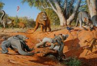Australia megafauna