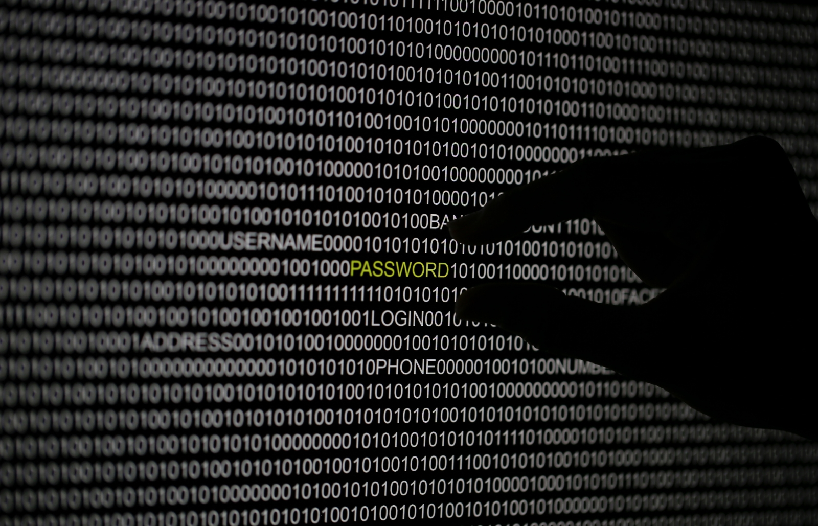 Silicon Valley translation firm with Google, Boeing and other clients hit with data leak