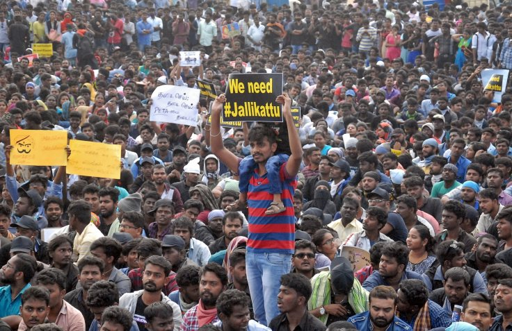 Tamil Nadu jallikattu protests