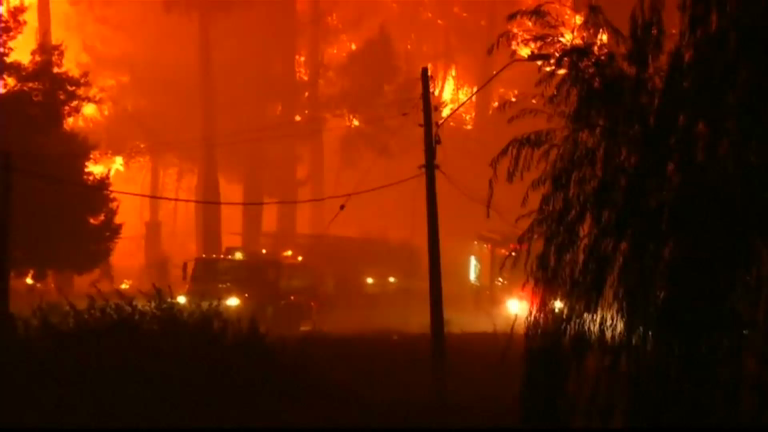 Chile declares state of emergency due to massive wildfires
