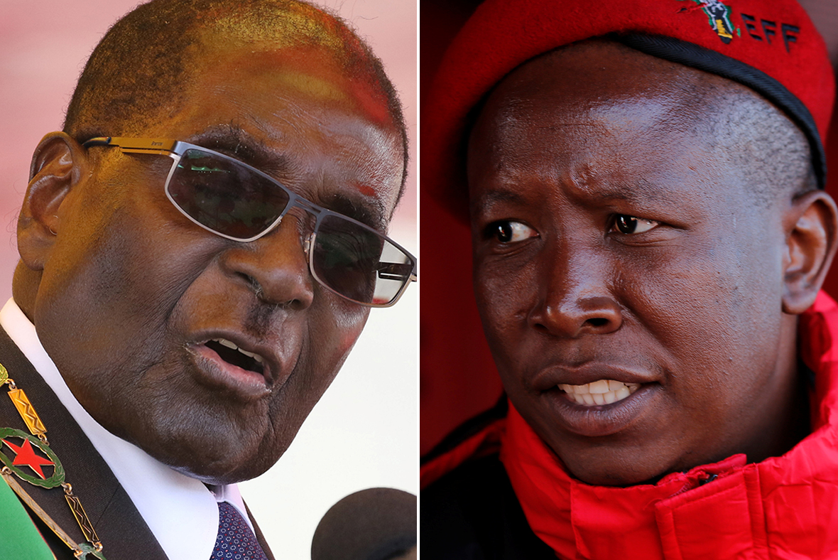 Robert Mugabe, Julius Malema
