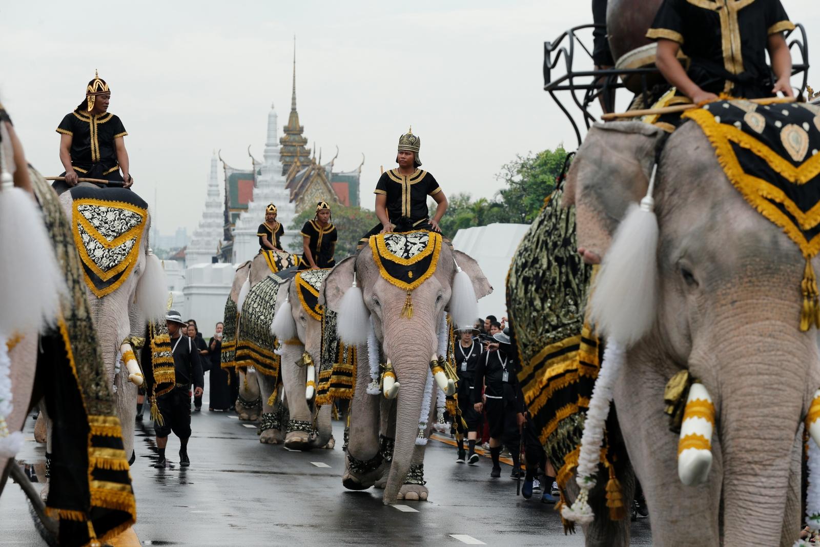 Elephant procession in Thailand honouring Bhumibol Adulyadej