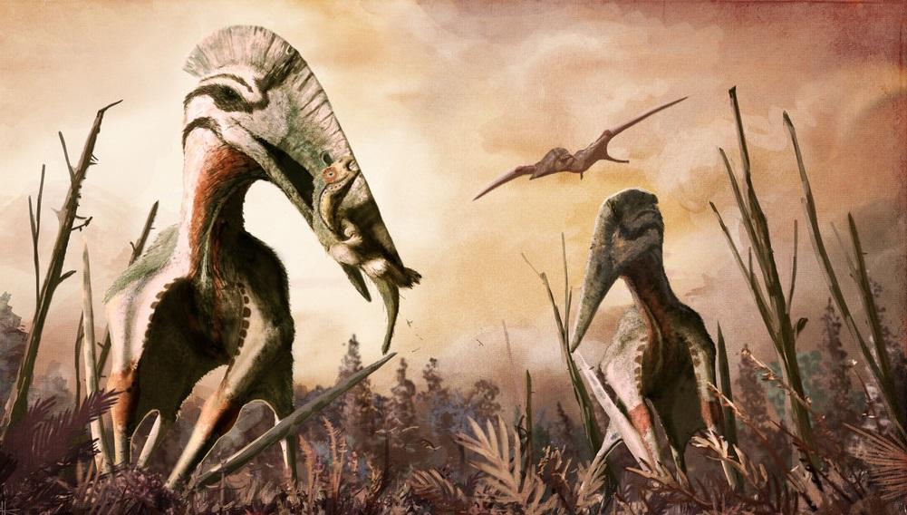 Transylvania: Giant pterosaur neck bone discovered - photo#15