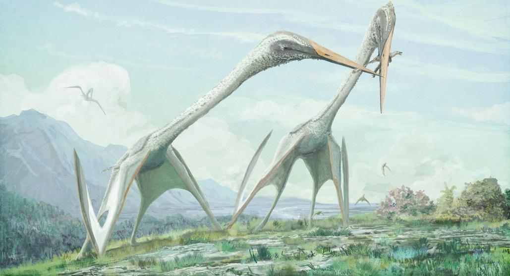 Azhdarchid pterosaur
