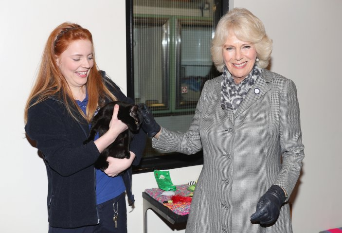 Duchess of Cornwall with a cat
