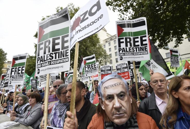 pro-Palestine