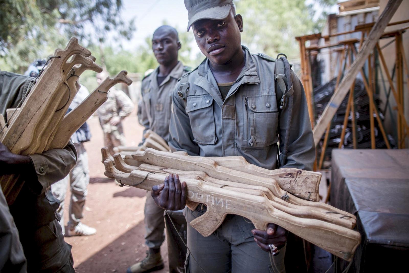 Africa Sahel regional force