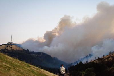 Christchurch wildfires