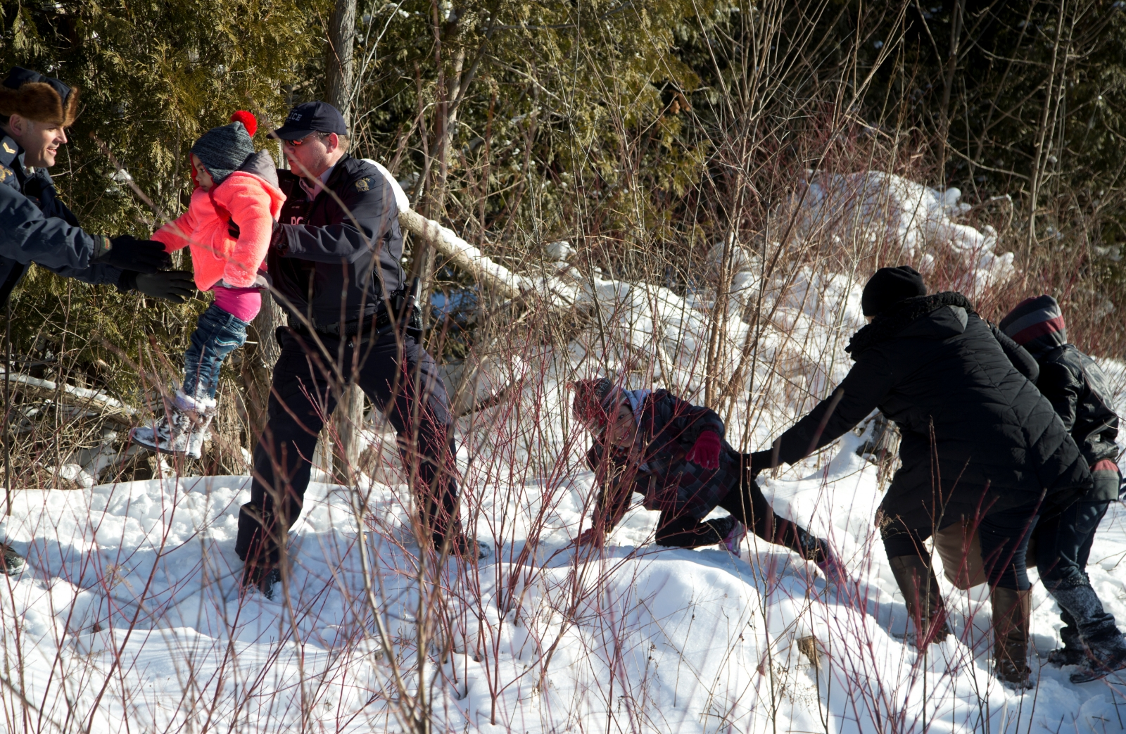 Reuters poll: nearly half of Canadians want illegal border crossers deported