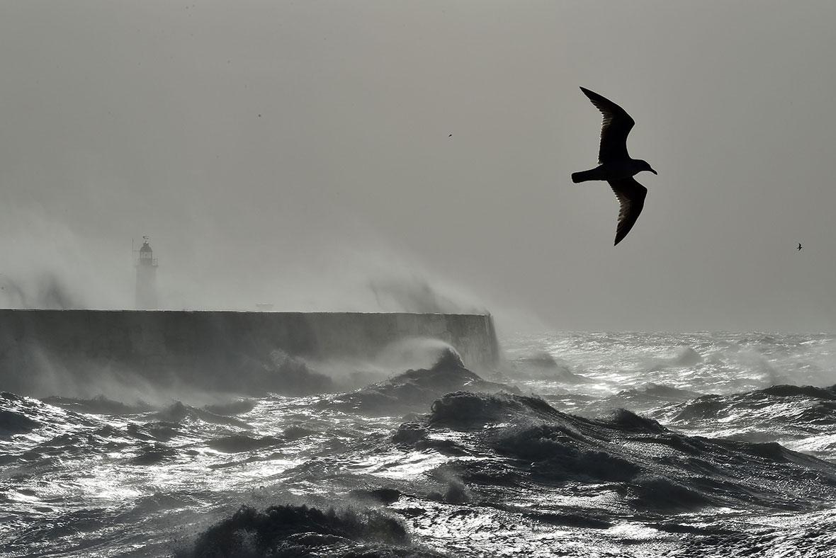 Storm Doris