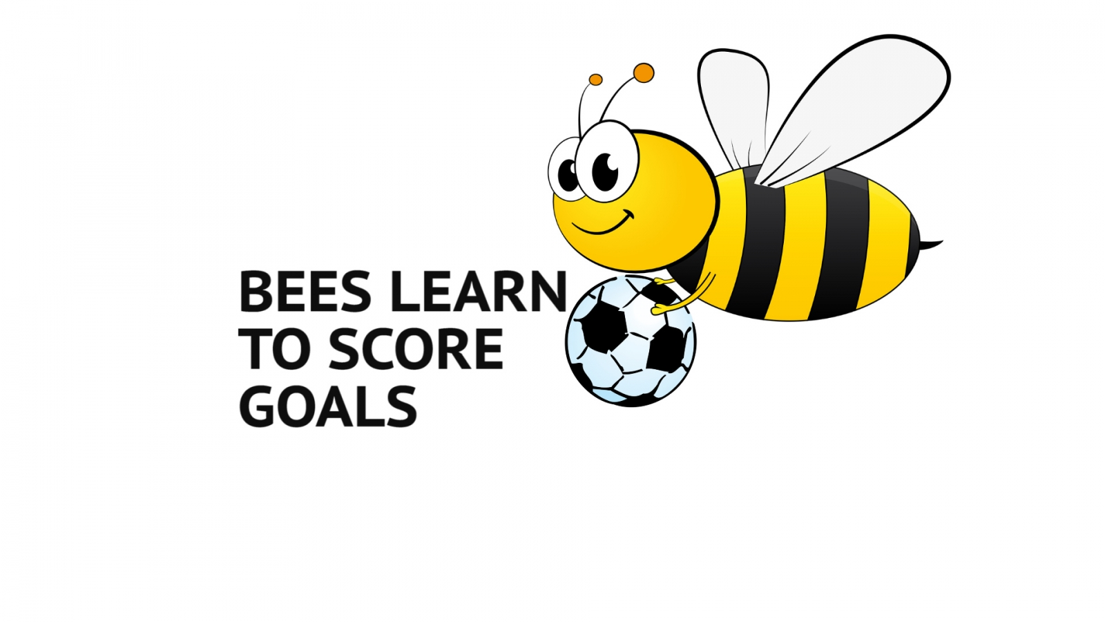 Scientists train bumblebees to score goals with tiny footballs for treats