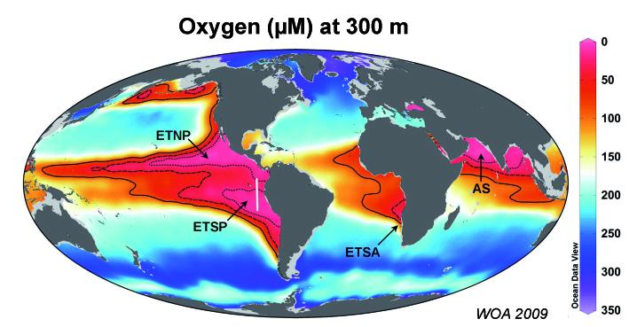Oxygen dead zones