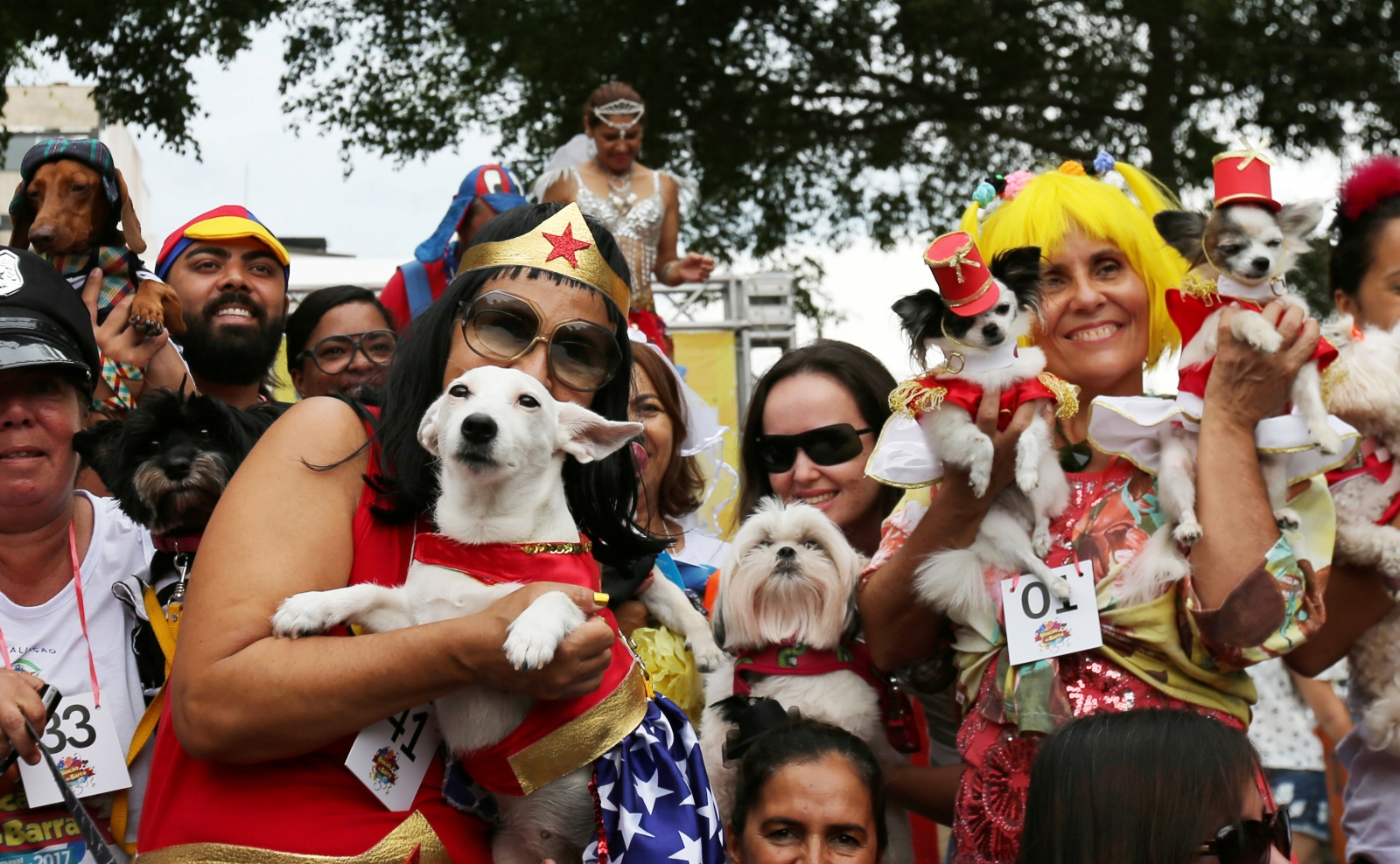 Dog lovers take time to dress their beloved pooches in special costumes