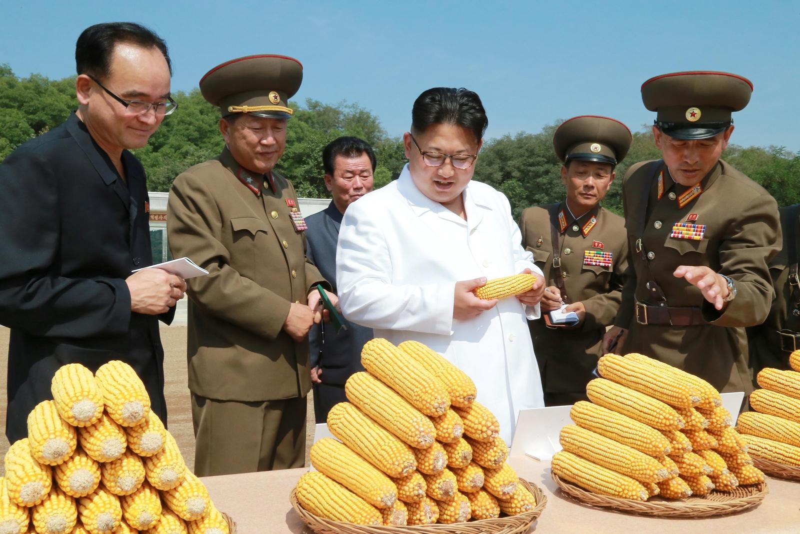 North Korea biochemical weapons