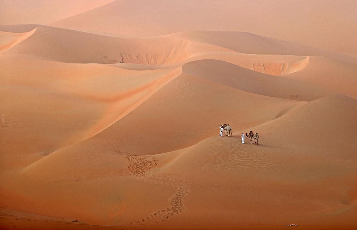 Rimah desert