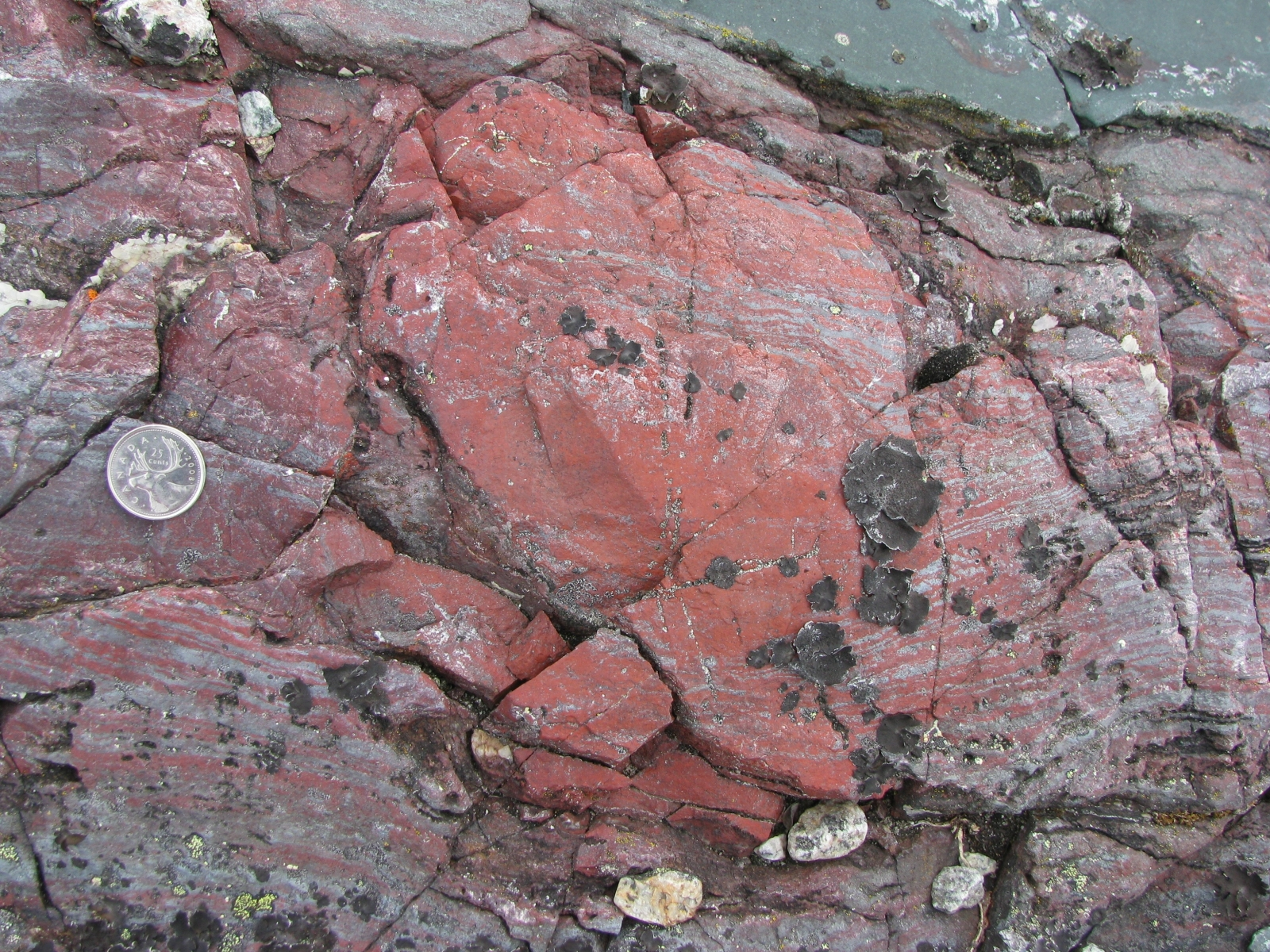 Traces in rock may be the oldest evidence of life on Earth ever