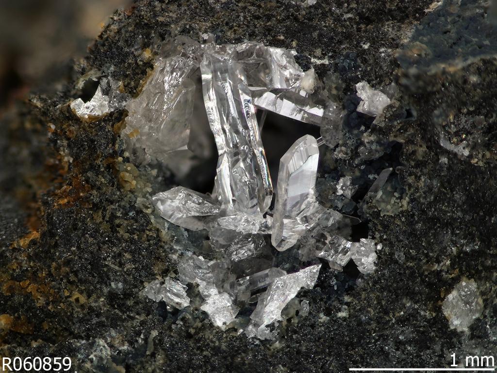 Fiedlerite