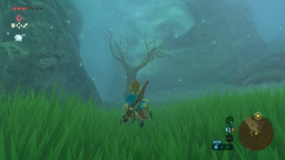 Breath of the Wild Lost Forest