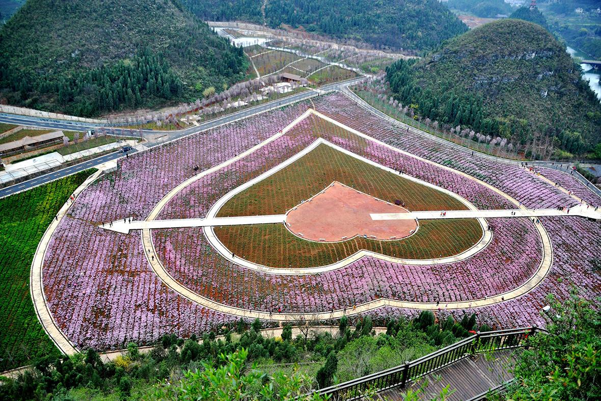 Flower park, China