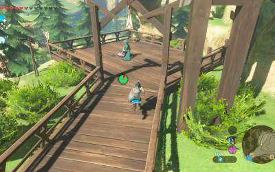 Zelda Tarrey Town Guide