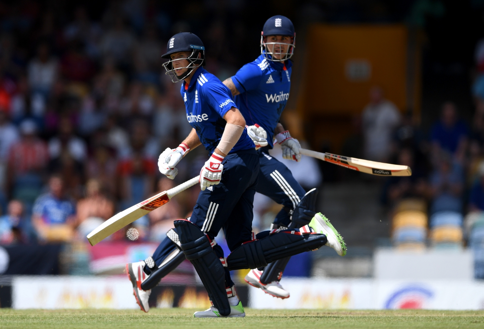 Joe Root and Alex Hales