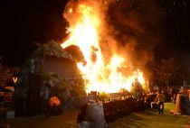 King Kong stature goes up in flames