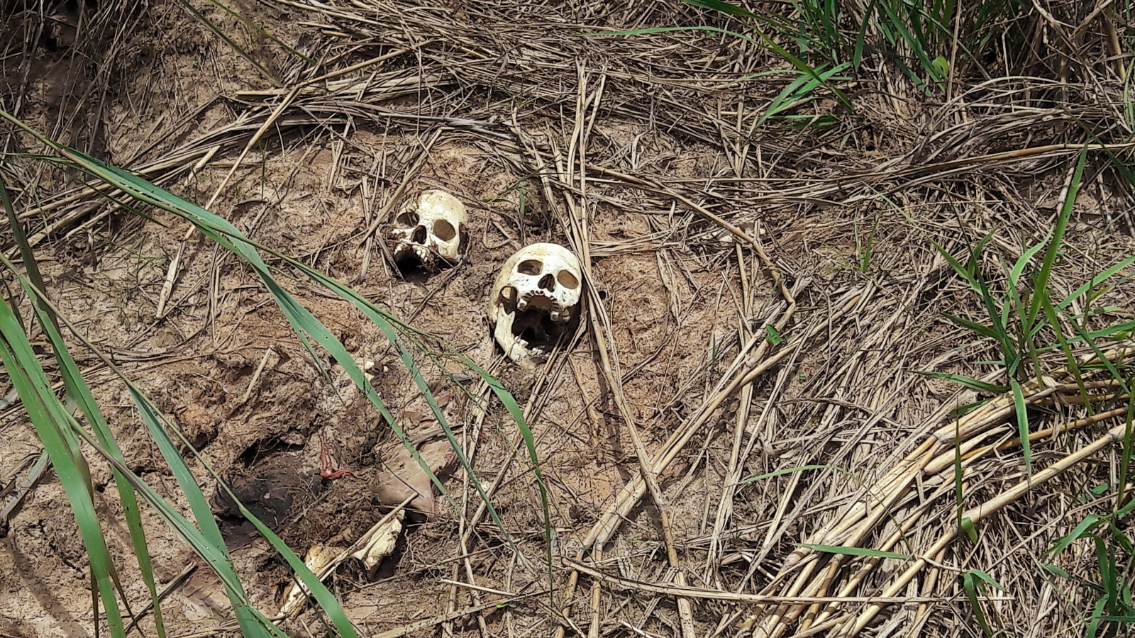 Mass grave in Kasai Central