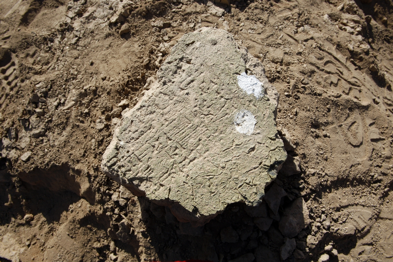cuneiform Babylon archaeology