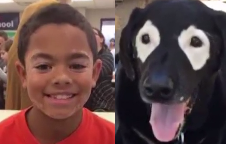 Dog helps boy with rare skin condition gain confidence
