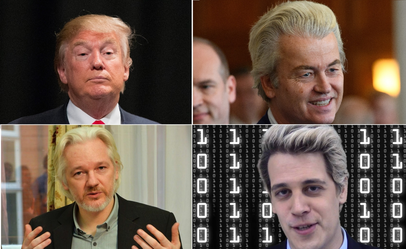 Trump Wilders Assange Milo