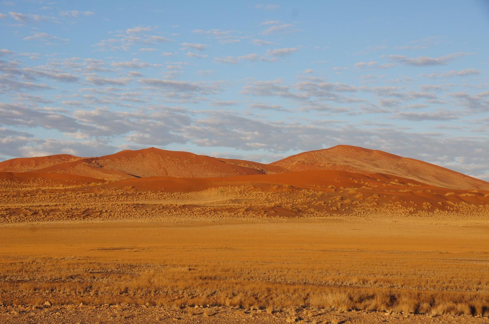 water desert