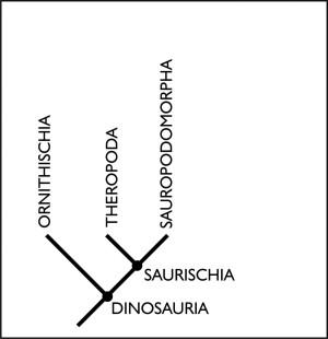 Old family tree