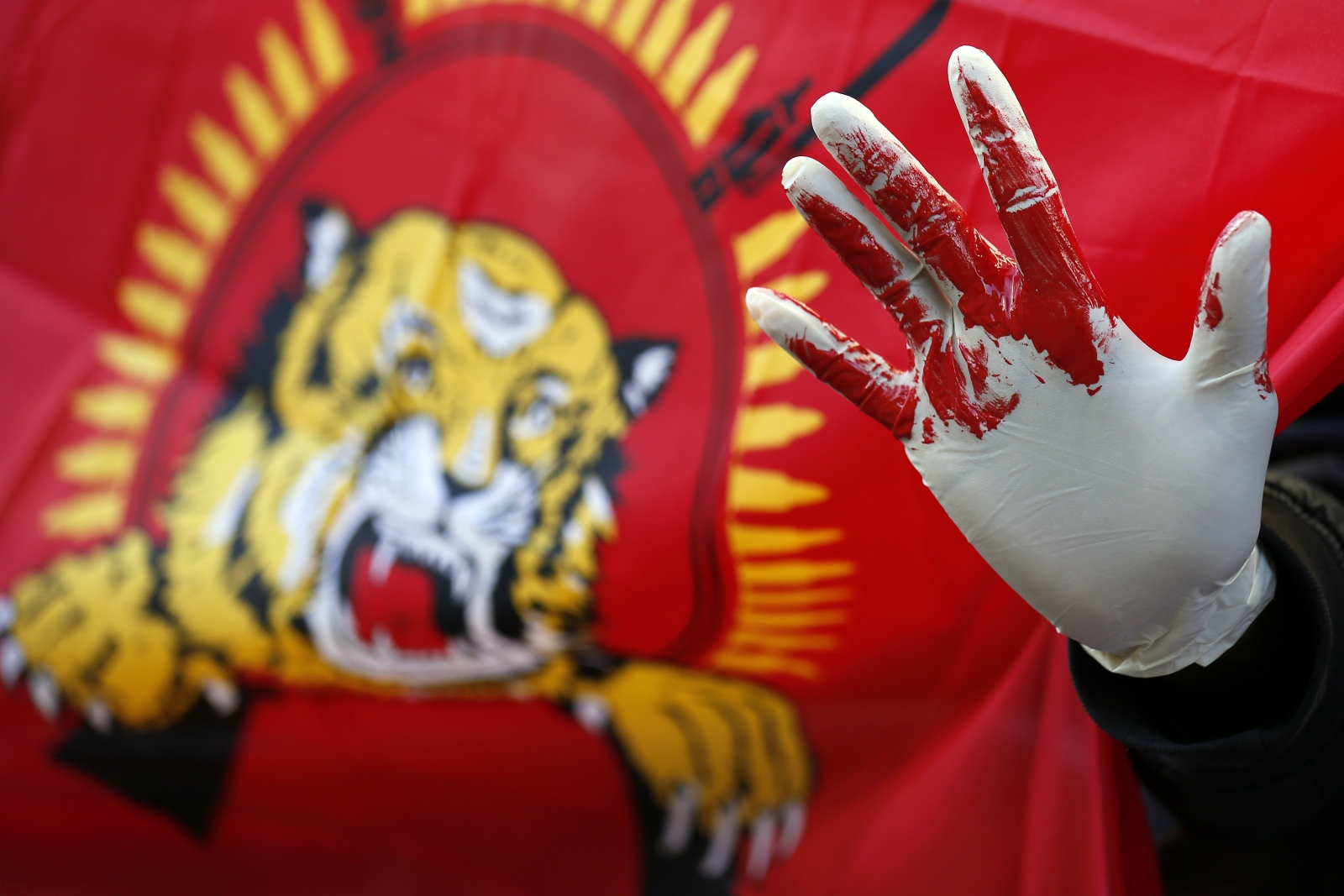 Sri Lanka civil war protest