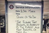 Oval Tube Station message