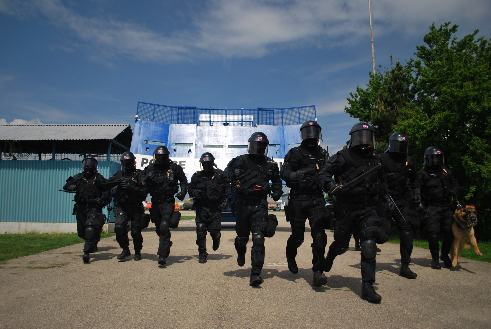 Bozena Riot anti-riot system officers