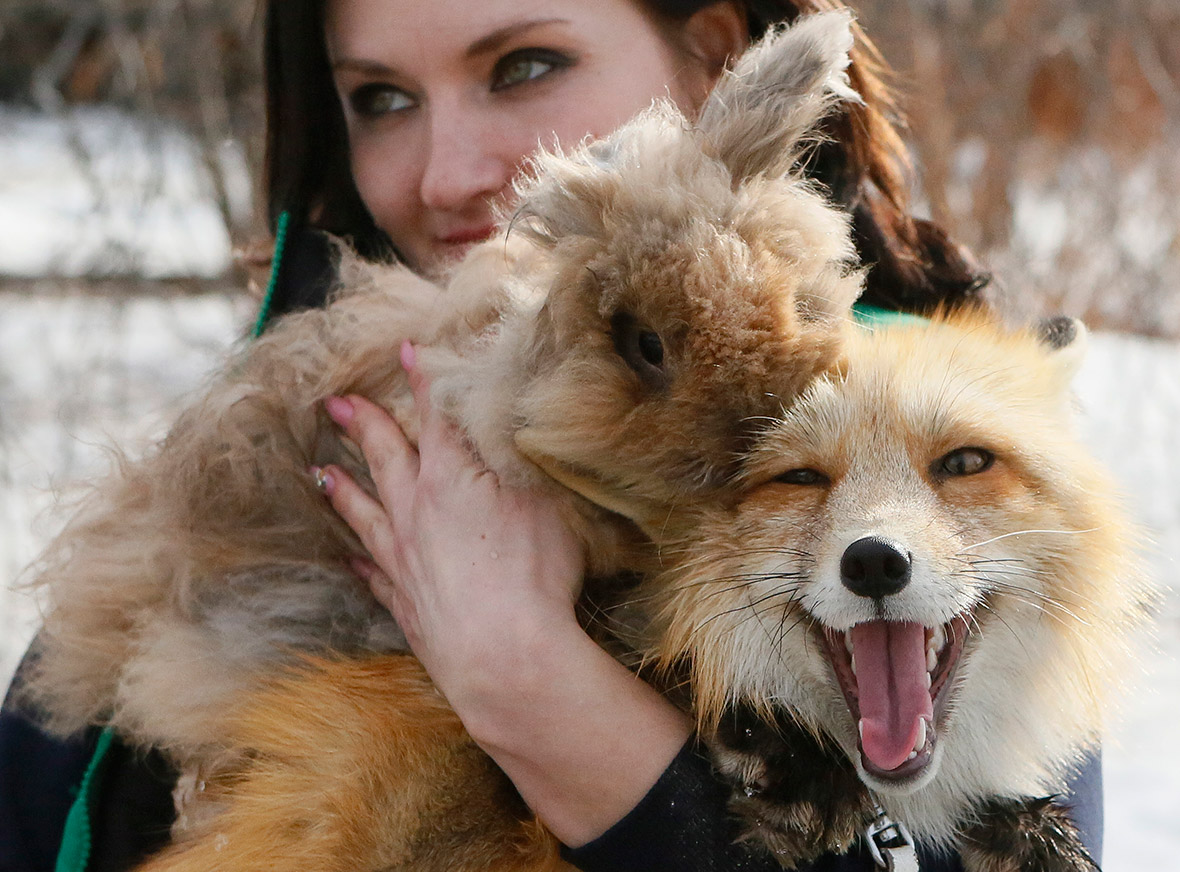 Royev Ruchey Zoo