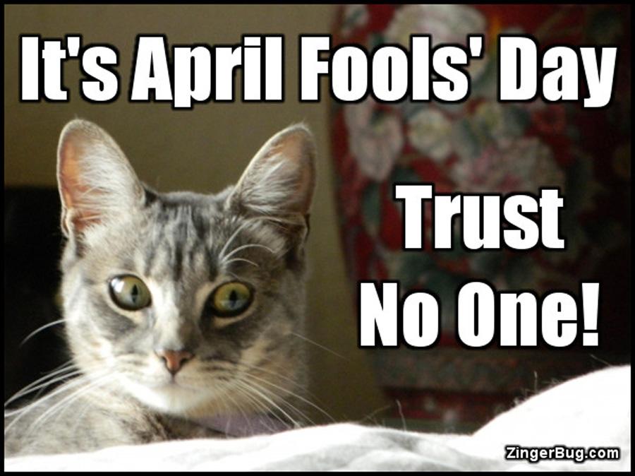April Fools' Day 2017 meme