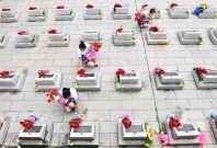 Qingming tomb sweeping festival