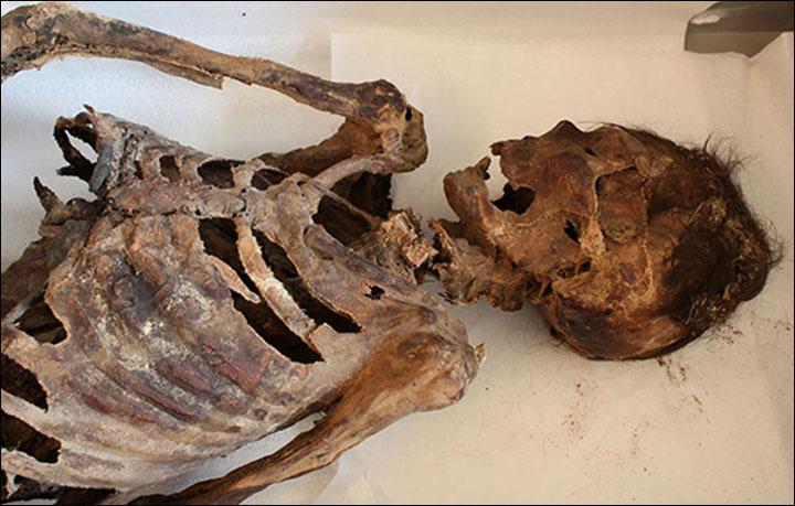 Mongolian mummy