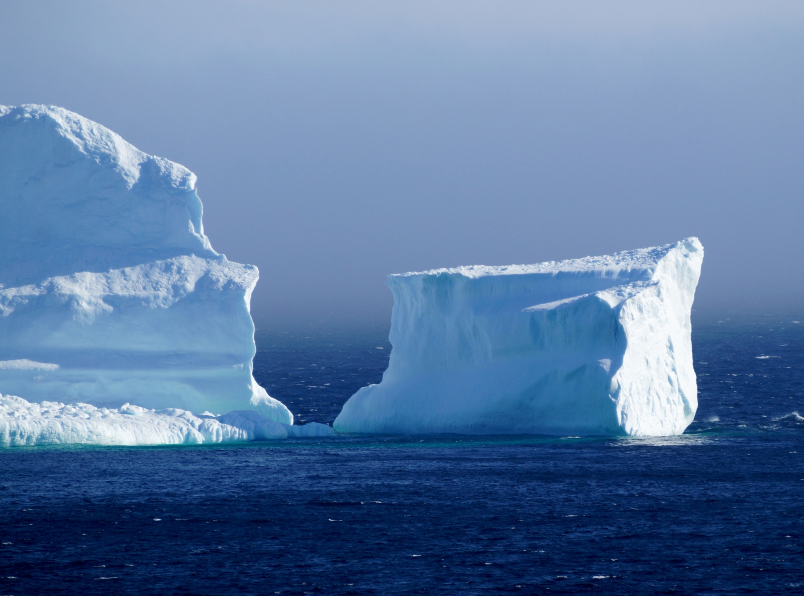 Breathtaking photos show massive icebergs floating by a seaside town