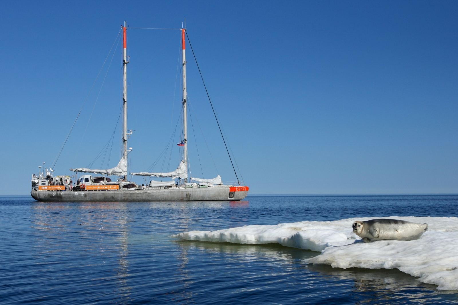 The Arctic Ocean Now Has Its Own Garbage Patch