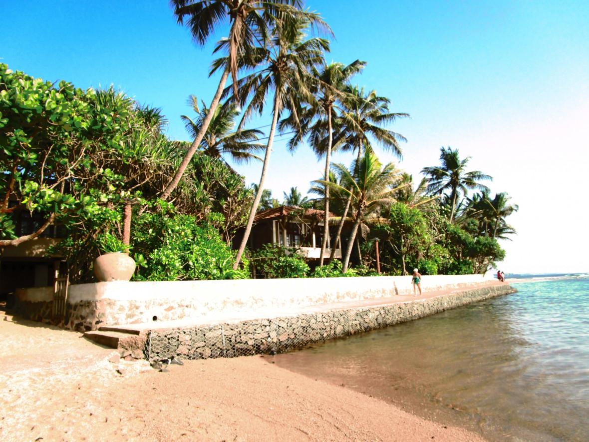 Sri Lanka Berberyn