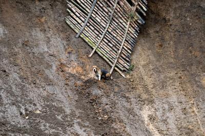 Colombia mudslide