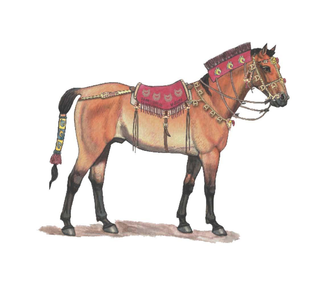 Scythian horse