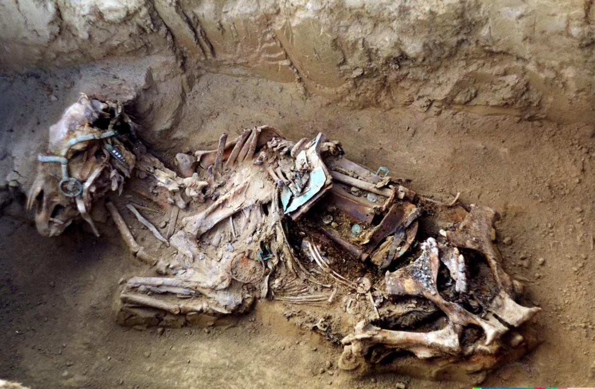 Horse tomb