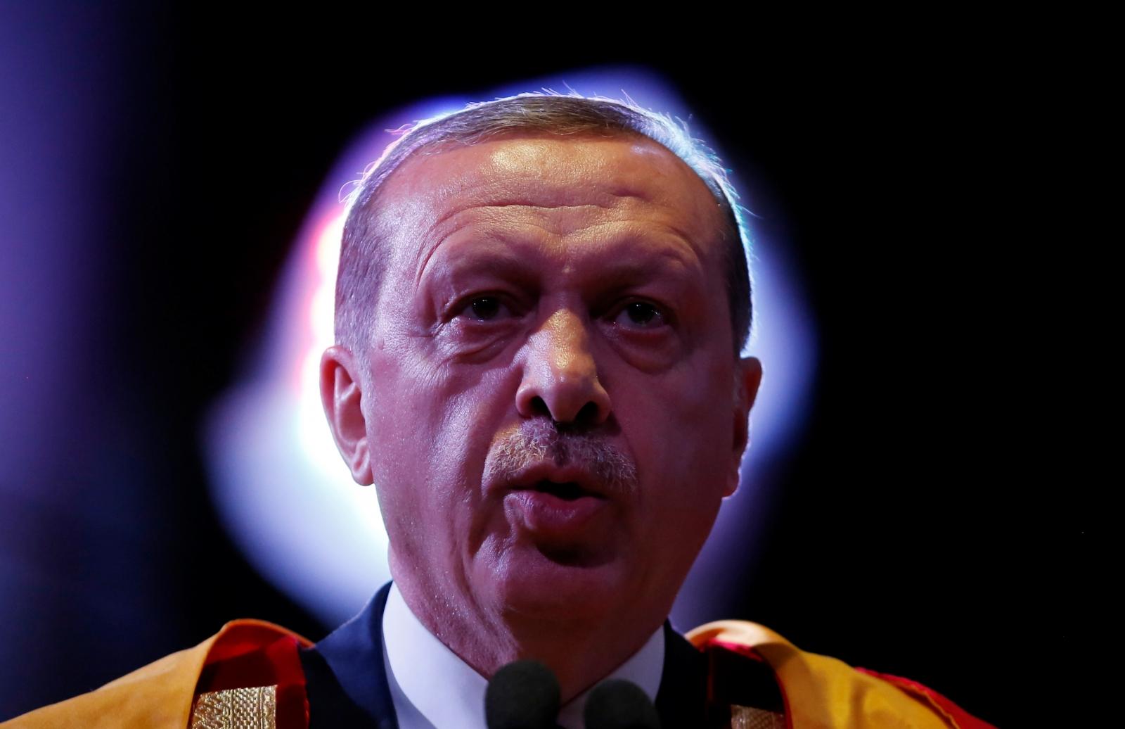 Turkey Erdogan honorary doctorate
