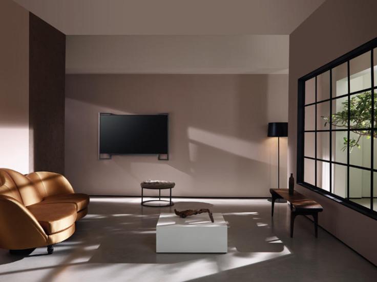 Loewe Bild 9 on wall