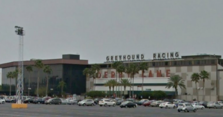 Derby Lane greyhound track